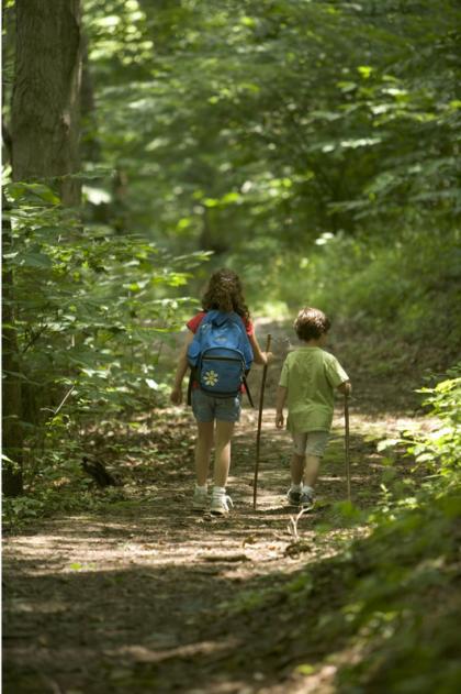 kids_woods_nature
